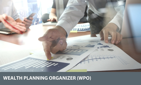 wealth planning organizer