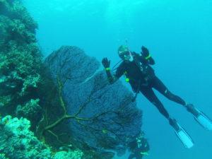 Amanda Thomas scuba diving